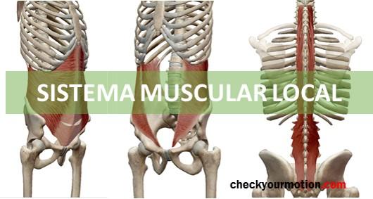 Fisioterapia deportiva: La estabilidad de la columna |CheckyourMOtion