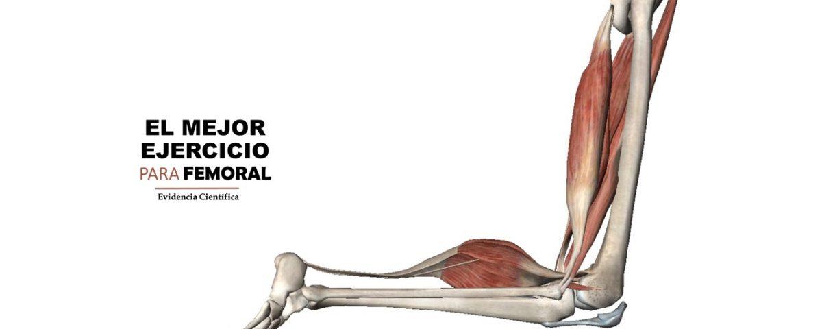 femoral ejercicio