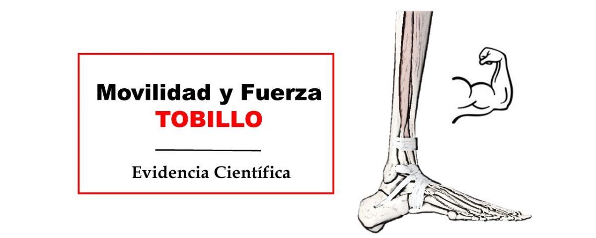 flexion dorsal y fuerza del tobillo pie