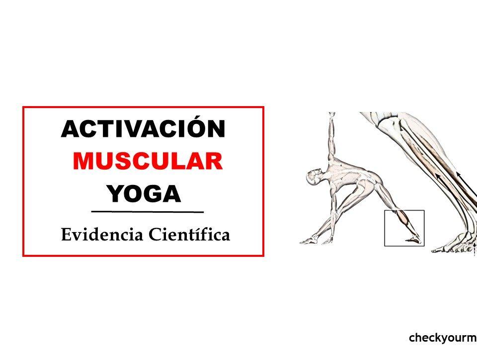 posturas de yoga musculos activacion