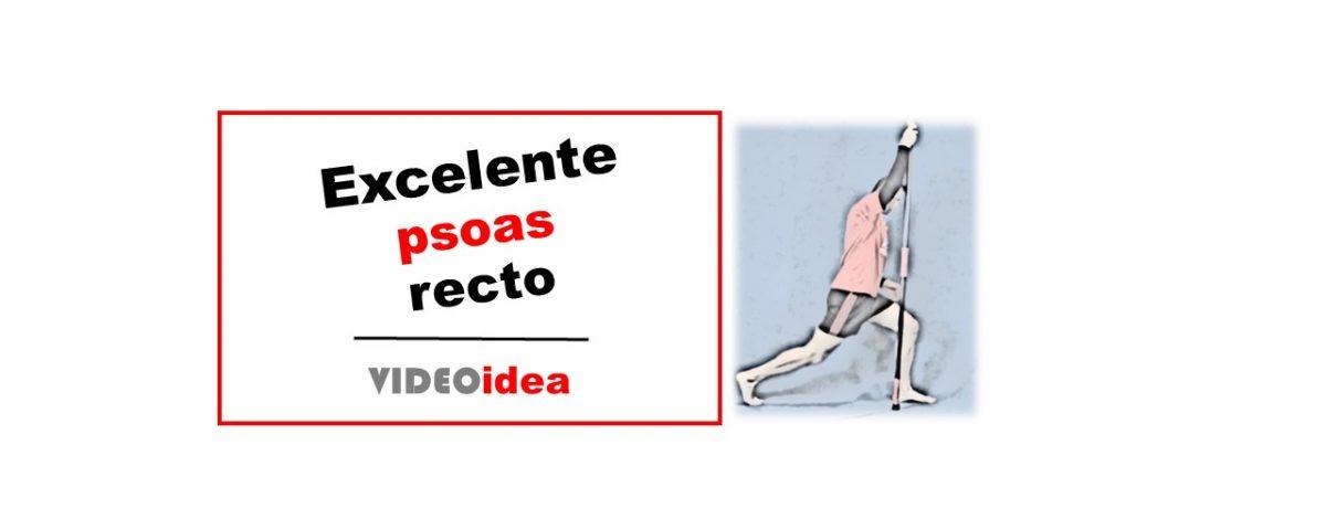 ejercicios buenos para el psoas y recto