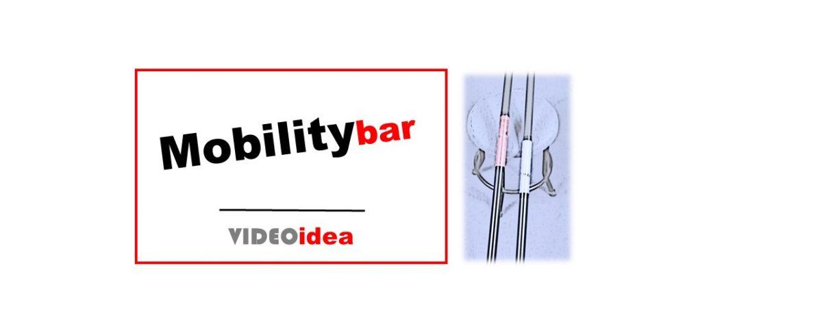 estiramientos correctos mobility bar.