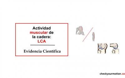 Actividad muscular de la cadera: LCA