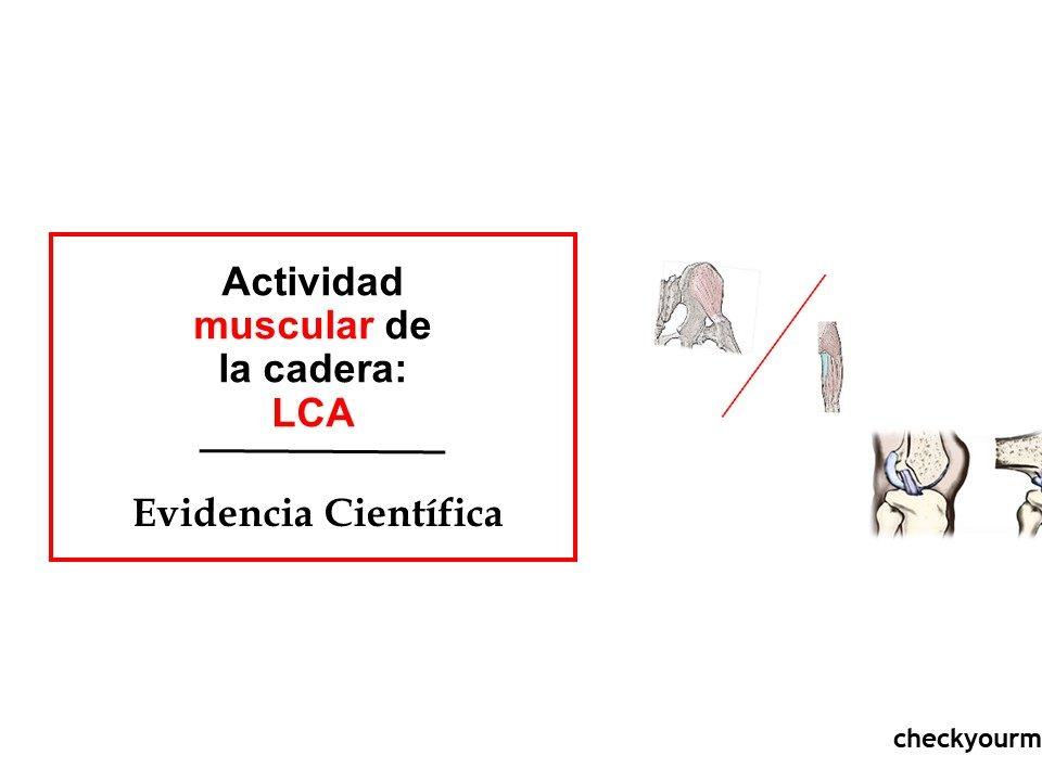 Actividad muscular de la cadera LCA