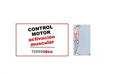 Control motor: amplifica los patrones de activación