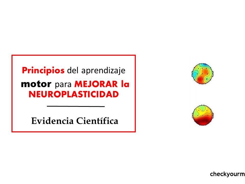 Principios de neuroplasticidad LCA
