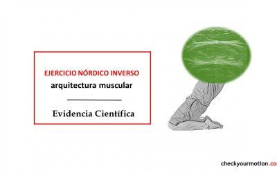 Curl nórdico invertido: efectos en la arquitectura muscular