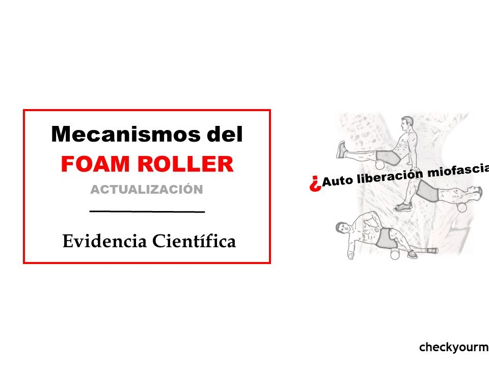 Revisión científica sobre los mecanismos del foam roller