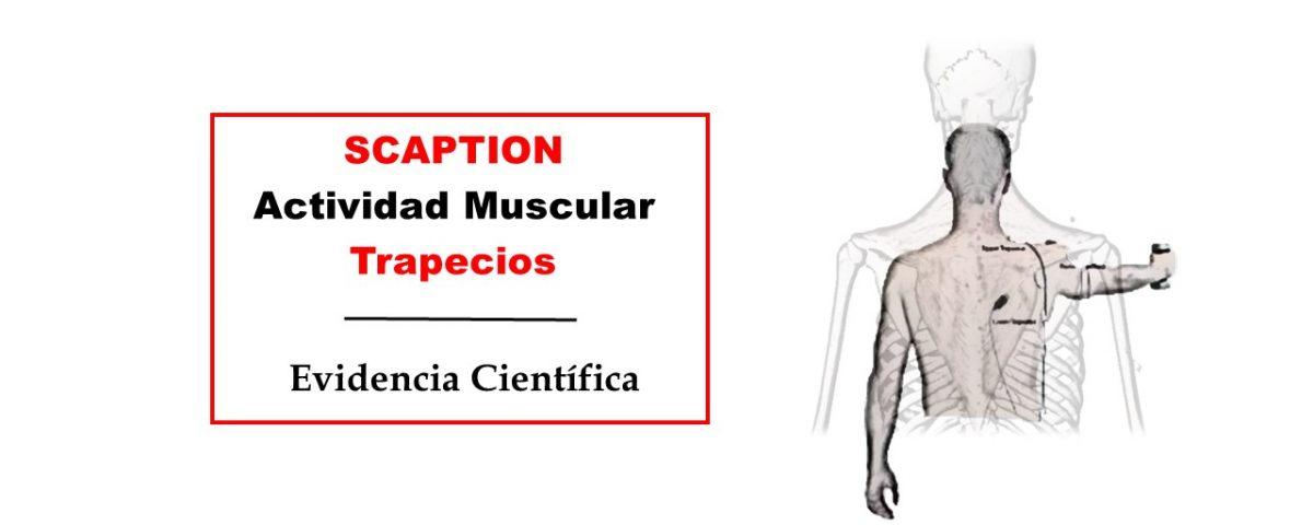 SCAPTION actividad muscular trapecios