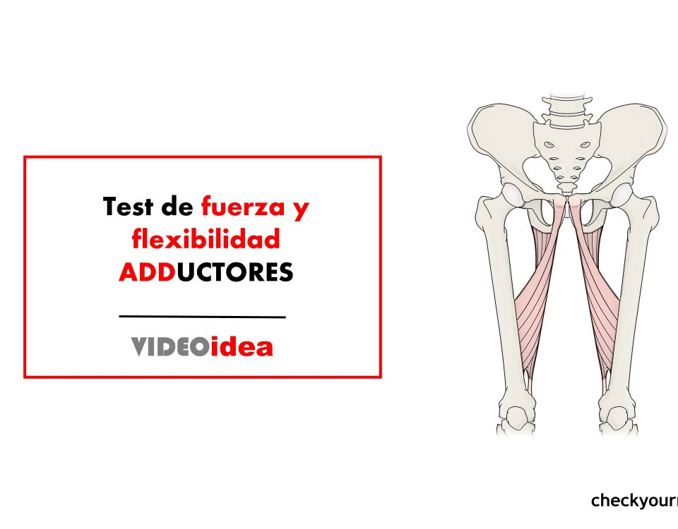 prueba de adductores Aductores Squeeze test y bent-knee-fall out test