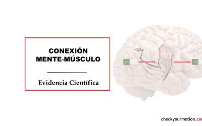 🧠-💪🏻||Conexión mente-músculo||