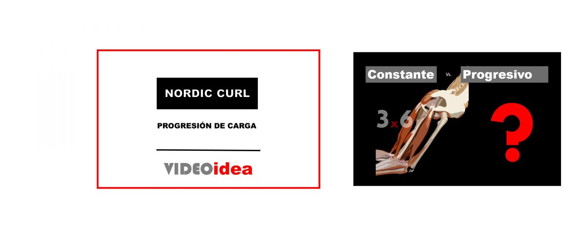 Series y repeticiones Nordic Curl