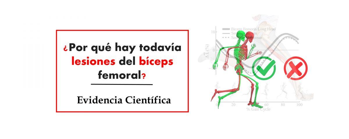 Lesión del bíceps femoral
